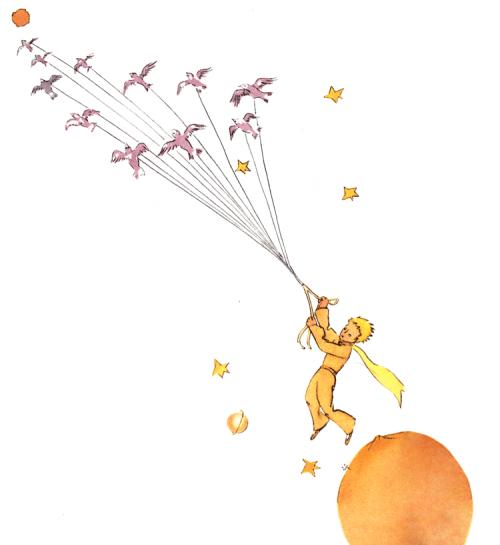 Der kleine Prinz – Flucht mit den Zugvögel