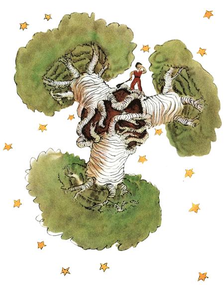 Der kleine Prinz – Der Planet mit den Affenbrotbäumen