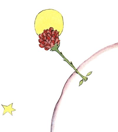 Die Rose des kleinen Prinzen