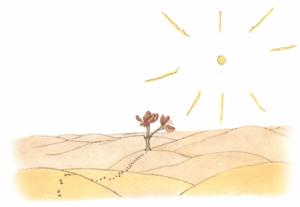 Die karge Blume in der Wüste meint, dass die Menschen keine Wurzeln haben und der Wind sie verweht.