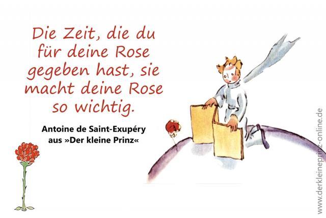 Die Zeit, die du für deine Rose gegeben hast, sie macht deine Rose so wichtig. - Zitat aus